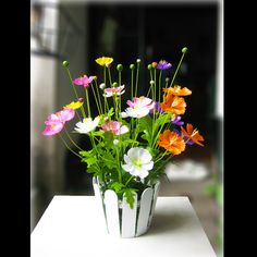 hoa sao nhái giấy - Google Search