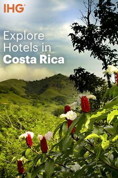 Hiking through a tropical rain forest, marveling at the view of an active volcano, or sun-bathing on miles of pristine white sand beaches—when you visit San José, Costa Rica, you don't have to choose; you can have it all. Book the perfect room in one of San José's fabulous hotels and plan your dream vacation.