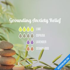 The ultimate essential oil blend software! Create your aromatherapy blends or search through our extensive list. Easily find what blends you can make based on the oils you have. Grounding Essential Oil, Essential Oil Diffuser Blends, Doterra Essential Oils, Doterra Grounding Blend, Relaxing Essential Oil Blends, Doterra Blends, Doterra Diffuser, Doterra Oil, Recipes