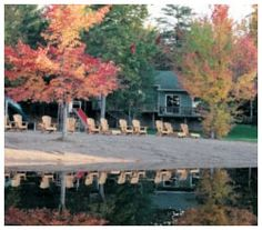 See the Beautiful Fall Colours in the heart of The Kawarthas Cottage Country. Pine Vista Resort on Stoney Lake. Waterfront Cottage, Never Leave You, Family Resorts, Peterborough, Hotel Offers, Ontario, Pine, Colours, Country