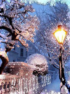 Snowfall Tree GIF - Tenor GIF Keyboard - Bring Personality To Your Conversations