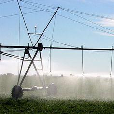 Consideraciones para el manejo del agua de riego y la gestión de la zona regable. Minimizar el impacto energético y la contaminación por nitratos de origen agrario, con la combinación de distintos factores, que definan la aplicación de riego, para alcanzar la máxima eficiencia en el agua empleada.