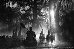 Marsel van Oosten é o vencedor geral do prêmio fotográfico International Travel Photographer of the Year de 2015. O fotógrafo holandês venceu concorrentes de mais de 110 países com duas séries de fotos. A primeira mostra os ciprestes na bacia do rio Atchafalaya, no Estado americano de Louisiana