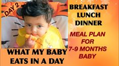 9 Month Baby Food, 7 Month Old Baby, 9th Month, Meal Plan For Toddlers, Easy Dinners For Kids, 7 Day Meal Plan, Baby Finger Foods, 7 Month Olds, Food Charts