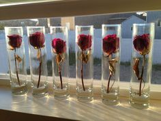 Preserving Valentines Day roses? looks like something out of beauty and the beast! so cool!