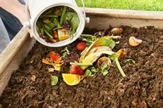 80 items you can compost: be careful what you use your compost for.they suggest composting used latex condoms and tampons but don't if you are planning to use the compost in your veggie garden. Garden Compost, Vegetable Garden, Garden Plants, Gardening Vegetables, Organic Gardening, Gardening Tips, Beginners Gardening, Organic Compost, Potager Bio