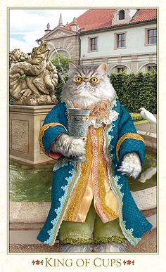 Cat Art...=^.^=...♥ The King of Cups...