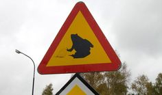 Weird Road Signs - See 10 Weird Road Signs From Around the World at WomansDay.com! - Woman's Day