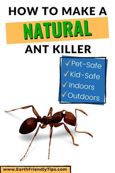 If you have ants in your home or yard, you don't have to use toxic pesticides that are dangerous to kids and pets to get rid of them. Instead choose one of these natural ant killers that are safe for pets and kids. Natural Remedies For Ants, Home Remedies For Ants, Natural Ant Repellant, Borax For Ants, Homemade Ant Killer, Ant Removal, Ant Spray, Ants In House, Ant Killers