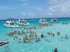 Grand Cayman Stingray City | grand cayman