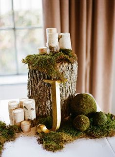 moss and wood branches and stumps - photo by Ryan Ray - http://ruffledblog.com/earthy-chic-dallas-wedding/