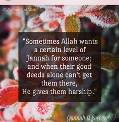 "Mu'awiyah (May Allah be pleased with him) reported: The Messenger of Allah (saw) said, ""When Allah wishes good for someone, He bestows upon him the understanding of Deen.""  [Al-Bukhari and Muslim]. re"