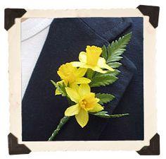 daffodil boutonniere