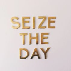 Seize the day! #walkinlove #boldaslions