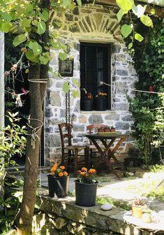 Booking.com: Damouchari Hotel , Damouchari, Grèce - 28 Commentaires clients . Réservez votre hôtel dès maintenant! Gardening, Plants, Inspiration, Destinations, Viajes, Biblical Inspiration, Lawn And Garden, Plant, Inspirational