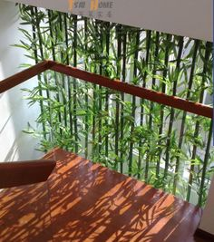 While common in most Asian homes that have enough land surrounding it, bamboo garden are not something that you usually hear about in the American home. Bamboo Screening, Garden Screening, Bamboo Planter, Bamboo Garden, Bamboo Tree, Bamboo Leaves, Faux Bamboo, Screened Porch Decorating, Partition Screen