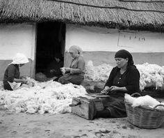 Greece-Ελλάδα.Γυναίκες ξάνουν το μαλλί των προβάτων.