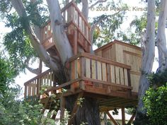 Wood Treehouse (Multiple Levels with Club House) Photo - Malibu