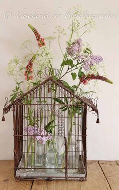 Whimsical floral display in glass vases set in an old/vintage birdcage.