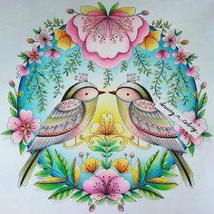 Lindo e delicado!  use #colorindolivrostop @Regrann from @drawing_n_coloring…