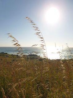 Imágenes gratuitas para apoyar el turismo sostenible http://tuavancecultural.wordpress.com/2013/08/29/imagenes-gratuitas-para-apoyar-el-turismo-sostenible/