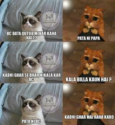 Pencil Carving, Bollywood Quotes, Dil Se, Funny Jokes, Lol, Humor, Cats, Memes, Animals
