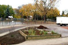 Aménagement d'une cour d'école plus verte et plus active: 6 sources de financement
