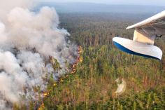 Venäjä aloitti Siperian valtavien metsäpalojen ilmasammutuksen – yli kolmen miljoonan hehtaarin roihut uhkaavat nopeuttaa ilmastonmuutosta   Yle Uutiset   yle.fi Poutine, New Pickup, France, Surfboard, Alaska, Fighter Jets, World, Aide, Vladimir Putin