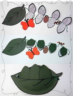 Students write about each stage of a butterfly's life cycle | Around the Kampfire
