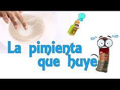 La pimienta que huye - Experimento de Física (Experimentos Caseros para niños) - YouTube