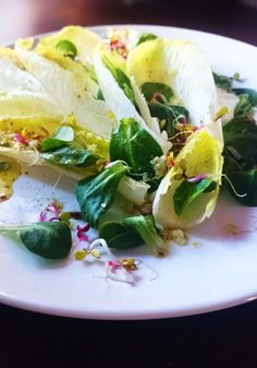 Chicory and lamb's lettuce salad Tasty, Yummy Food, Lettuce, Lamb, Salad, Concept, Cooking, Healthy, Salads