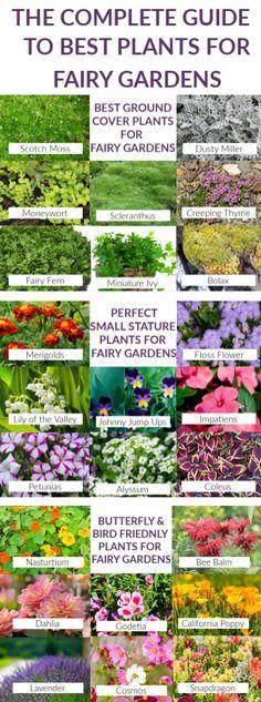 Kids Fairy Garden, Indoor Fairy Gardens, Fairy Garden Houses, Gnome Garden, Miniature Fairy Gardens, Kew Gardens, Garden Bed, Container Fairy Garden, Backyard Garden Ideas