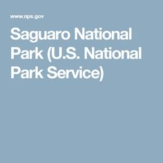 Saguaro National Park (U.S. National Park Service)