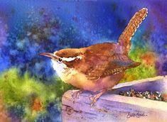 Carolina Wren by Susan Crouch (American)