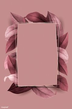 premium illustration of Rectangle foliage frame on pink Rectangle foliage frame on pink background vector