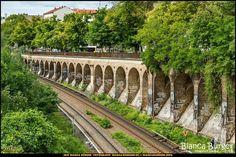 Humboldthain - Blick von der Fußgängerbrücke auf die S-Bahn-Gleise #Gesundbrunnen #Berlin #Deutschland #Germany #biancabuergerphotography #igersgermany #igersberlin #IG_Deutschland #IG_berlincity #ig_germany #shootcamp #pickmotion #berlinbreeze #diewocheaufinstagram #berlingram #visit_berlin #canon #canondeutschland #EOS5DMarkIII #5Diii #SBahn #Gleise #tracks #biancabfoco