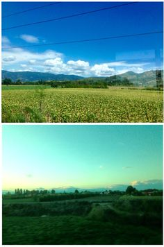 i. train ride, view from Cortona  ii. train ride from Rome to Florence, view from Pianiga