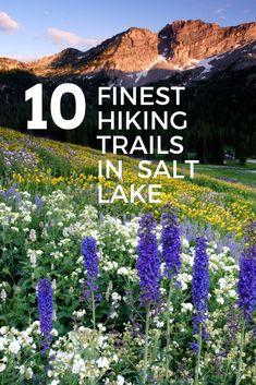 10 Finest Hiking Trails in Salt Lake The top 10 hiking trails near Salt Lake City, Utah. Hike, mountain bike or trail run some of SLC's finest trails along the Wasatch. Thru Hiking, Camping And Hiking, Hiking Trails, Men Hiking, Backpacking, Zermatt, Amsterdam, St George Utah, Utah Adventures