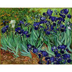 van gogh irises at saint remy circa 1889