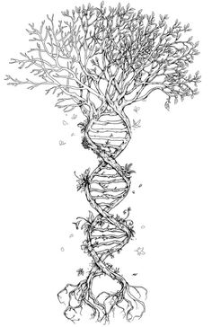 "DNA ""tree of life"" tree tattoo design"