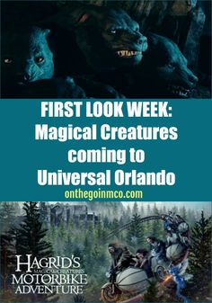 FIRST LOOK WEEK: Magical Creatures coming to Universal Orlando