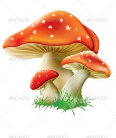 Illustration about Fairy happy baby fox on green grass with mushrooms and flowers. Illustration of kitty, drawing, plush - 44057601 Mushroom Paint, Mushroom Drawing, Mushroom House, Orange Mushroom, Mushroom Tattoos, Happy Baby, Fabric Painting, Rock Art, Clipart