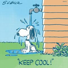 It's getting hot out there ~ keep cool! | Snoopy at Peanuts official via Twitter