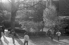 People walk behind Alden Library at Ohio University, 1982
