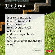 """""""The Crow"""" by Danny P. Barbare"""