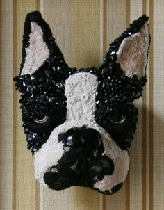 Coward Donya: montaje en pared cabezas de perro.  Boston Bull Terrier