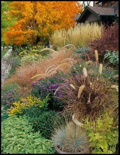 Flowering with ornamental grasses