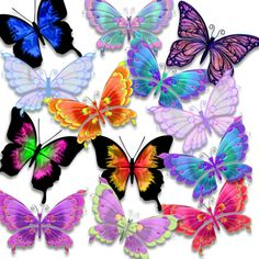 BUTTERFLY FANTASIES - $8.99 : Delightful-Doodles Designs!, Baby graphis ,wedding graphics, and printables including bags, purses and boxes for crafters, scrapbookers, candy wrappers and creative folks.