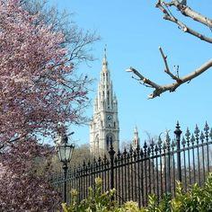 I don't think #Vienna is actually a real place just a figment of my European dreams.    #Spring #Easter #blossoms #lonelyplanet #myunicornlife #mytinyatlas #theprettypursuit #worldtravelbook #winningmeover #wheretofindme #chasing_facades #travel #travelgram #vienna_city  #travelblogger #vienna_austria #welovevienna #discoveraustria #feelaustria #ig_austria  #iamatravelette #mytinyatlas #mytravelgram #wanderlust #passionpassport #cntraveler