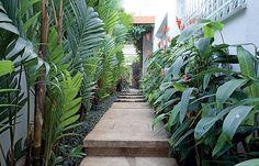 37 Ideas For Backyard Tropical Oasis Decks Tropical Garden Design, Tropical Backyard, Tropical Landscaping, Backyard Landscaping, Tropical Gardens, Tropical Plants, Side Garden, Garden Paths, House Landscape